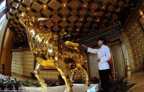 Kham pha ngoi lang duoc menh danh la 'giau co nhat Trung Quoc' - Anh 3