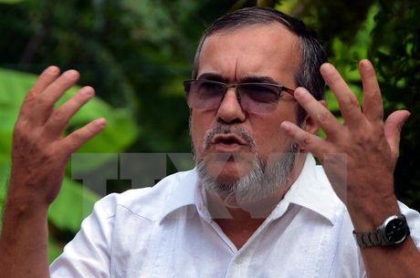 Colombia: Thu linh toi cao FARC san sang ky thoa thuan hoa binh - Anh 1