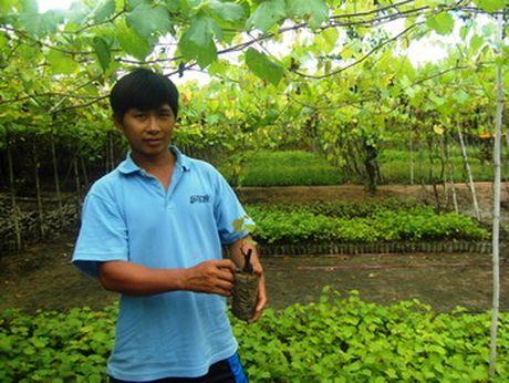 Thuong hieu 'nho 7 sanh' nuc tieng Ninh Thuan - Anh 1