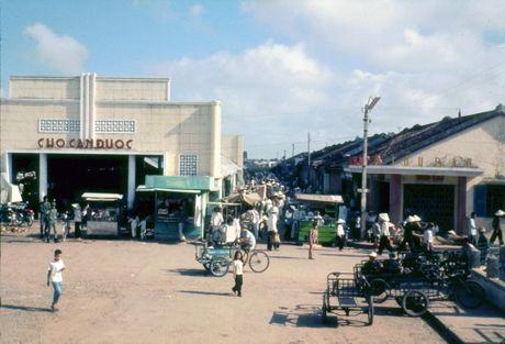 Anh doi thuong thu vi o Long An nam 1968 (1) - Anh 2