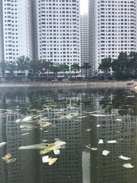 Mat ho Linh Dam bat ngo xuat hien luong lon... bao cao su da su dung - Anh 1