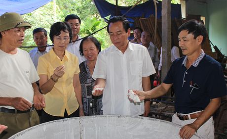 Tang cuong giam sat de cong khai minh bach cac du an nam 2017 - Anh 1