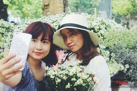 Ha Noi dau dong - mua hen cung cuc hoa mi - Anh 14