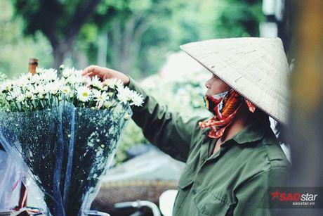 Ha Noi dau dong - mua hen cung cuc hoa mi - Anh 5