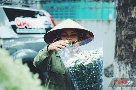 Ha Noi dau dong - mua hen cung cuc hoa mi - Anh 6