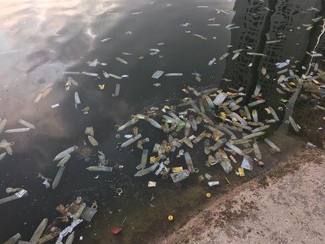 Ha Noi: Bao cao su noi trang ho Linh Dam - Anh 2
