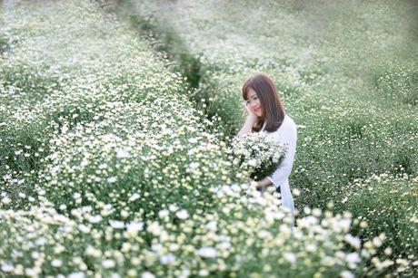 Thieu nu Ha thanh 'do sac' cung hoa cuc hoa mi - Anh 10