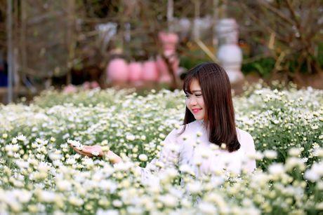 Thieu nu Ha thanh 'do sac' cung hoa cuc hoa mi - Anh 12