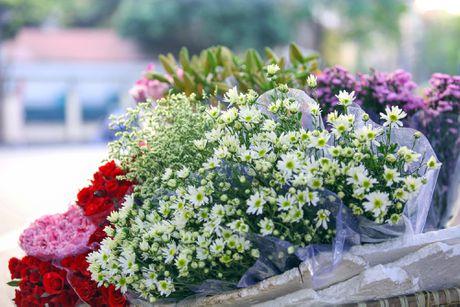 Thieu nu Ha thanh 'do sac' cung hoa cuc hoa mi - Anh 15