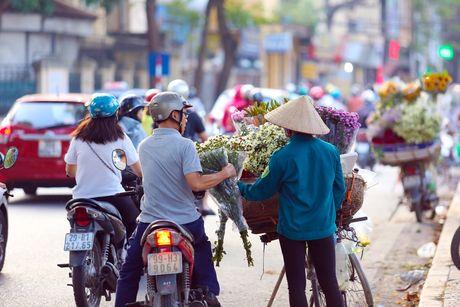 Thieu nu Ha thanh 'do sac' cung hoa cuc hoa mi - Anh 16