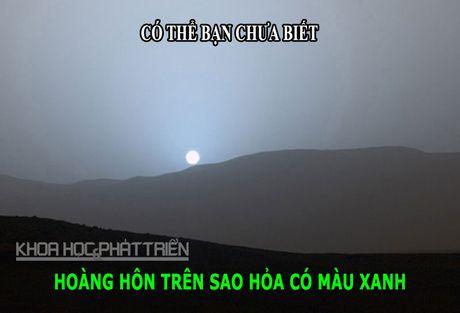 DOC-LA: Loai dong vat ky la co tinh hoan nam tren dau - Anh 2