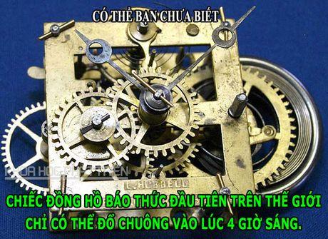 DOC-LA: Loai dong vat ky la co tinh hoan nam tren dau - Anh 4
