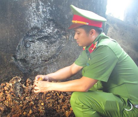 Bat co so lam mo ban dua di Ha Noi tieu thu - Anh 1