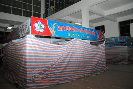 Buc minh tham du Hoi cho Nong nghiep - Thuong mai khu vuc Tay Bac 2016 - Anh 2
