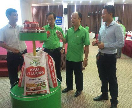 Cong ty Tien Nong gioi thieu 3 dong san pham phan bon tiem nang - Anh 2