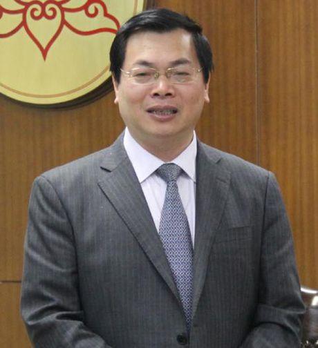 Quoc hoi giao Chinh phu lam ro vu ong Vu Huy Hoang - Anh 1
