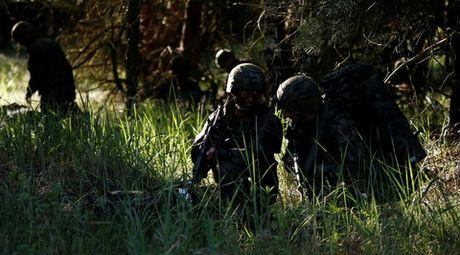 NATO bat ngo xuong nuoc voi Nga - Anh 1