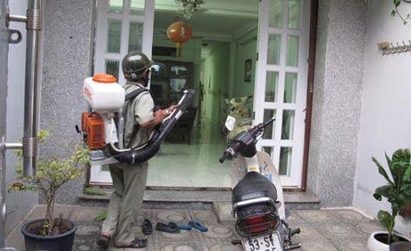 TP Ho Chi Minh: 17 quan huyen co nguoi nhiem vi rut Zika - Anh 2