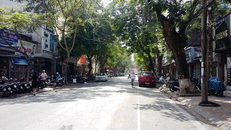Hai Phong cong bo thiet ke quy hoach chi tiet 1/500 tuyen pho Dinh Tien Hoang, Hoang Van Thu - Anh 1