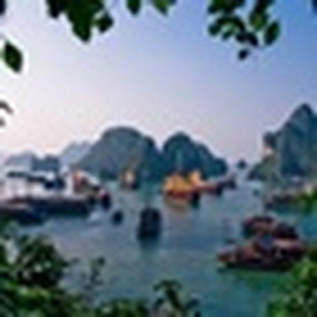 Viet Nam da sac mau tren bao nuoc ngoai - Anh 12