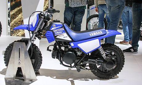 Yamaha PW50 - cao cao cho tre em gia 1.700 USD - Anh 1