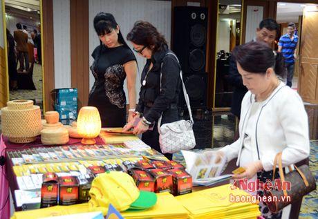 Hon 150 doanh nghiep Thai Lan tham du hoi nghi quang ba xuc tien du lich Nghe An tai Bang Coc - Anh 3