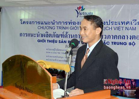 Hon 150 doanh nghiep Thai Lan tham du hoi nghi quang ba xuc tien du lich Nghe An tai Bang Coc - Anh 5