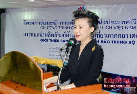 Hon 150 doanh nghiep Thai Lan tham du hoi nghi quang ba xuc tien du lich Nghe An tai Bang Coc - Anh 6
