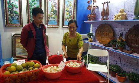 Goc khuat phi ly tai Hoi cho Nong nghiep - Thuong mai khu vuc Tay Bac - Anh 13