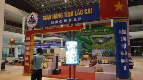 Goc khuat phi ly tai Hoi cho Nong nghiep - Thuong mai khu vuc Tay Bac - Anh 4