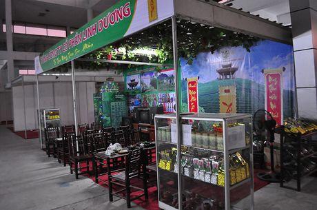 Goc khuat phi ly tai Hoi cho Nong nghiep - Thuong mai khu vuc Tay Bac - Anh 7