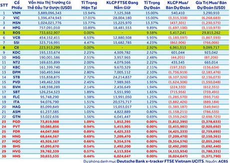 ACBS: ROS co the duoc FTSE mua vao 30 trieu USD trong dot review cuoi nam - Anh 2