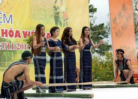 Tai hien net van hoa ba mien nhan ngay Di san van hoa Viet Nam tai Lam Dong - Anh 2