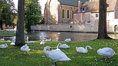 Bruges - thanh pho co tich cua chau Au - Anh 5