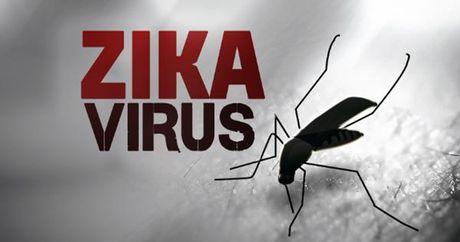 Hang diet muoi an theo benh do virus Zika tai TPHCM - Anh 1