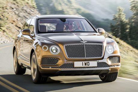 'Xin' nhu Bentley Bentayga cung bi trieu hoi - Anh 1