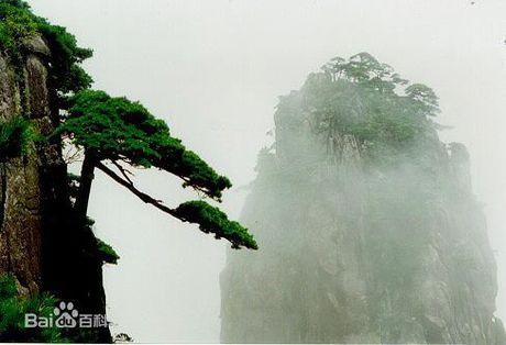 Ngam tien canh Hoang Son hut hon du khach - Anh 3