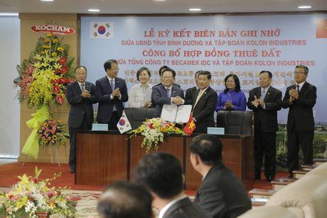 Binh Duong don sieu du an 1 ti USD - Anh 1
