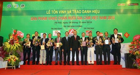 Ton vinh san pham vang chan nuoi gia cam - Anh 1