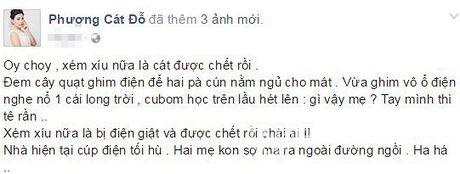 Cat Phuong hoang so khi suyt bi dien giat chet - Anh 1