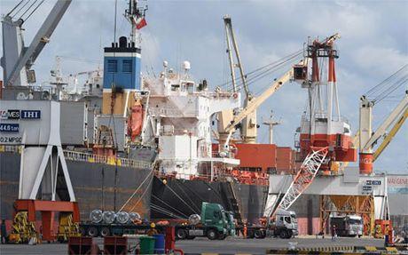 Logistics Viet Nam con 'hong' tu doanh nghiep den ha tang - Anh 1