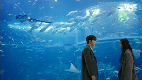 Xem phim Huyen thoai bien xanh tap 3: Lee Min Ho quen 'sach' ve tien ca Ji Hyun - Anh 10