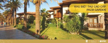 Khu biet thu cao cap Palm Garden – Noi mong den, chon mong ve - Anh 1