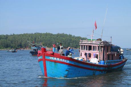 Quang Ngai: Tau hong may, 11 ngu dan troi dat tren bien - Anh 1
