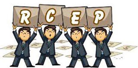 Quen TPP di, su chu y luc nay phai la RCEP - Anh 3
