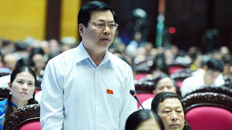 Quoc hoi giao Chinh phu xu ly sai pham cua ong Vu Huy Hoang - Anh 1