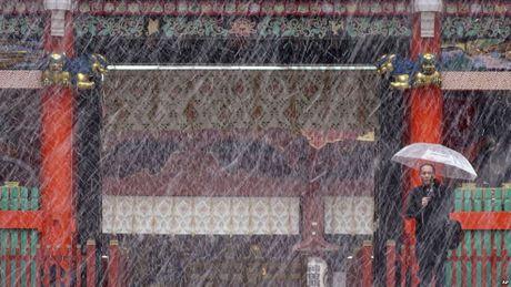 54 nam, tuyet lan dau roi vao thang 11 o Tokyo - Anh 1