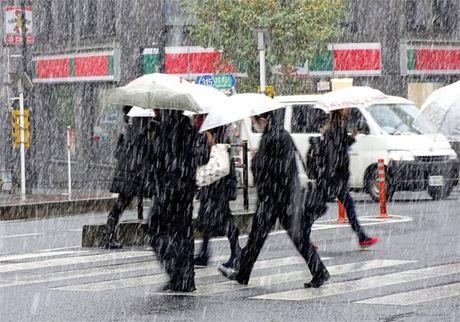 Tokyo hung tuyet roi thang 11 lan dau trong 54 nam - Anh 3