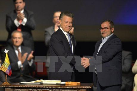 Chinh phu Colombia va FARC ky thoa thuan hoa binh lan hai - Anh 1