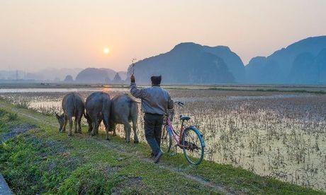 Nhung ly do khien khach Tay me man o Viet Nam - Anh 1